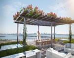 Baltus House - Roof Deck