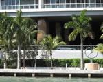 Icon Brickell - Entrance - Bayfront