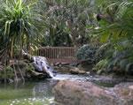 Key Colony - Park